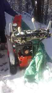 Arien snowblower