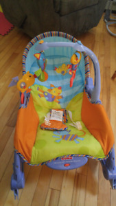 Fisher Price Infant/Toddler Rocker