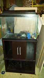 20 gal fish tank, stand & accessories  $100