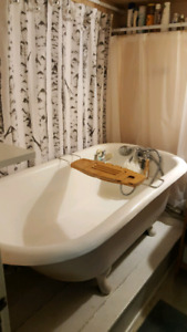 One bedroom pet freindly flat downtown Dartmouth