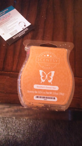 Wanted Scentsy Rep