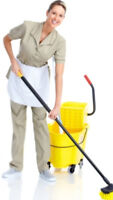 Looking for an experienced cleaner once a week.