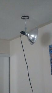 2 Lights for reptiles