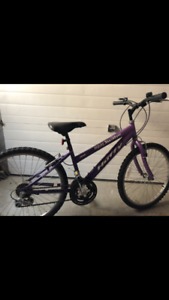 18 Speed Girls Mountain Bike