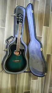 Acoustic electric guitar with case