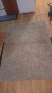 8' x 10' shag Costco rug