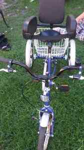 12 inch  genisis youth or adult  trike  Sarnia Sarnia Area image 5