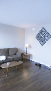 3 Rooms for Rent - available now