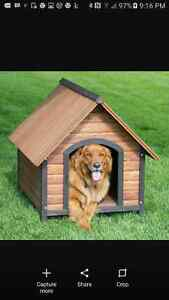 Looking for a large or extra large dog house