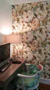 For all your decorating jobs!!! Strathcona County Edmonton Area image 2