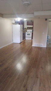 Very bright walkout basement in Bridlewood (SW)