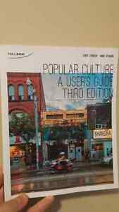 Popular Culture A User's Guide 3rd Edtion