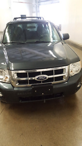 2008 Ford Escape XLT 2WD