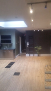 Large loft style one bedroom 2 minutes from Waterloo