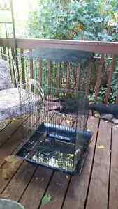 Large cage for suitable for most animals Kingston Kingston Area image 3