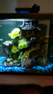 Fish Tank Structure