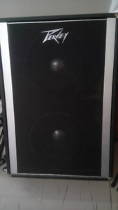 Speaker bass cabinet, dual 15 inch Black Widows