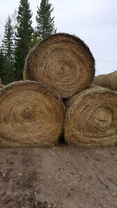 hay for sale 2016