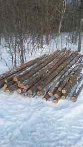 Firewood cedar posts and rails