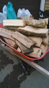 Large Bags Dry Firewood $8 ea or 5-$35 BEST DEAL LOCALLY..CK!