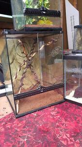 Exoterra Reptile Enclosures