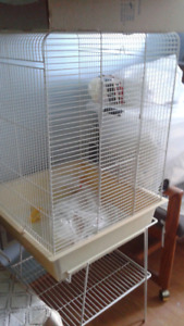 Large Bird Cage With Stand, Perches, Swing, Food Containers