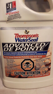 Thompson's Water Seal Advanced