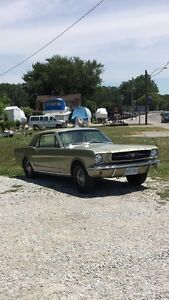 1965 For Mustang
