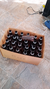 25 plastic beer bottles
