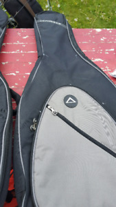 Ultimate support guitar case