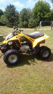 can am 250