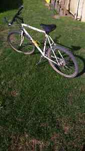 Vintage LOOK Mi80 mountain bike for sale