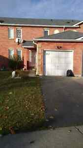 142 Wright Cres Rental