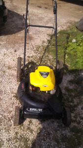 End  of season special! 3 in 1 mower  with  bag