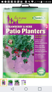 Strawberry / Herb patio planters (2 in pk)
