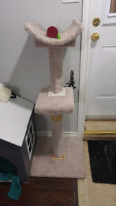 Cat tree and cat accessories