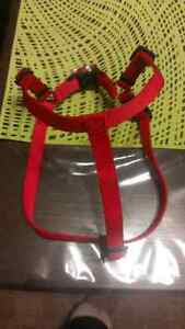 Dog harness - medium size. Like new!!!