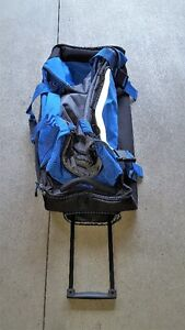 Soft walled wheeled Luggage or Sports bag