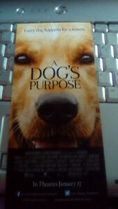 A Dog's Purpose new movie coming out