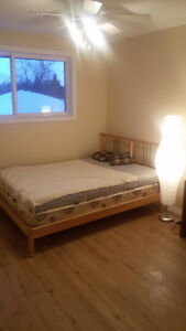 Looking for roommate. Room for rent in Kitchener Kitchener / Waterloo Kitchener Area image 1
