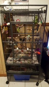 WANTED ......... WANTED.....Large bird cage