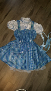 Dorothy costume like new sparkley size 8-10