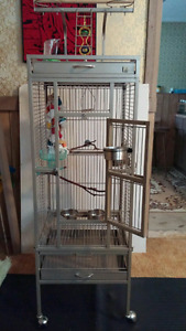 Bird Cage 350.00 come with accessories