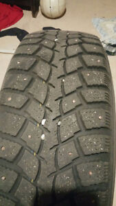 Winter tire with rims and stud