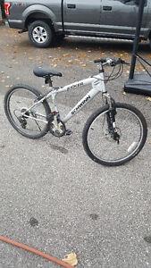 """Schwinn 24"""" bike"""