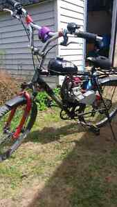 Motorized bicycle / gas bike