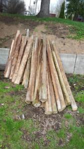 Cedar posts