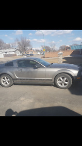 2008 Ford Mustang base v6 Coupe (2 door)