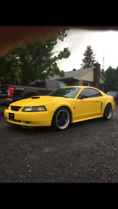 FORD MUSTANG GT 2004,  40 IEME ANNIVERSAIRE
