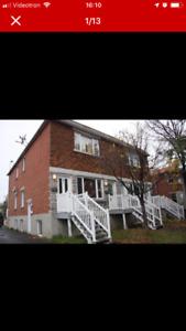 Grand logement 31/2 à louer  demi-sous sol